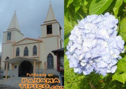 [Local church and a flower, one of the main exports of Boquete]