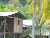 [Thumbnail: A house at Kankintu]
