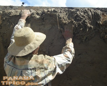 [This wall is nearly completed, we can see that the mud has reached the top of it.]