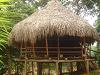 [Thumbnail: Traditional Embera house.]