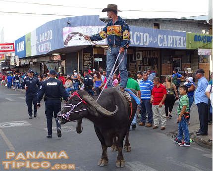 [Some flamboyant characters, such as this water buffalo rider, were present at the streets of the city.]