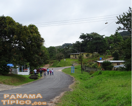[This is a typical countryside community in Panama, with houses separated by ample yards.]