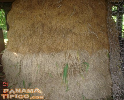 [Rice beehive after completion. It is left alone until the rice grains lose most of the humidity, so they can be peeled.]